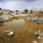 Contaminación del agua en los alrededores de la mina La Platosa. Ejido La Sierrita, Durango